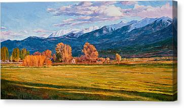 Lengthening Shadows Canvas Print by Shawn Shea