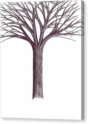 Second-generation....tree Without Roots Canvas Print by Giuseppe Epifani