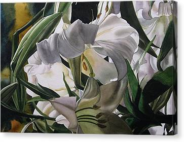 Lily In White Canvas Print by Alfred Ng