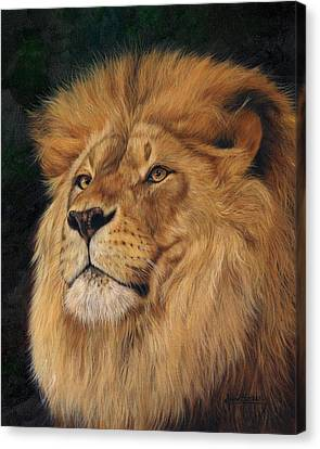 Lions Canvas Print - Lion by David Stribbling