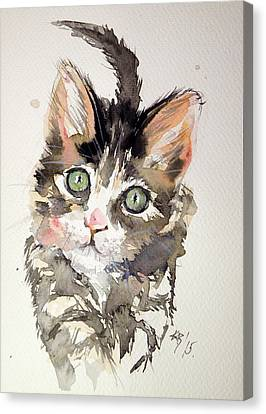 Little Cat Canvas Print