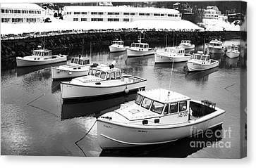 Lobster Boats Canvas Print by Christy Bruna