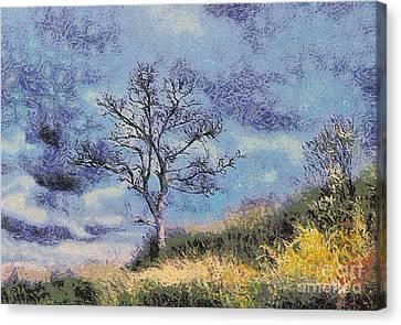 Lonely Tree Canvas Print by Odon Czintos