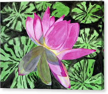 Lovely Lily Canvas Print by Debi Singer