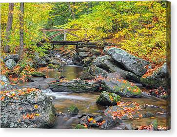 Canvas Print featuring the photograph Macedonia Brook by Bill Wakeley