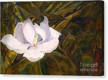 Canvas Print featuring the painting Magnolia Blossom by Sandy Linden