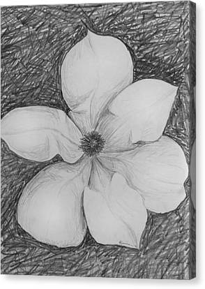 Magnolia Canvas Print by Kume Bryant