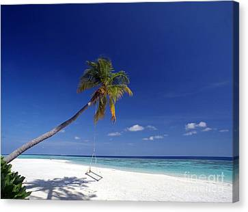 Maldives 06 Canvas Print by Giorgio Darrigo