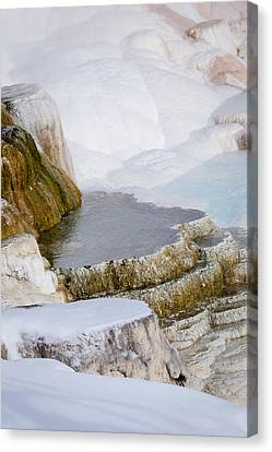 Mammoth Terraces Canvas Print