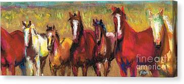 Mares And Foals Canvas Print by Frances Marino