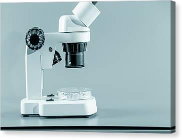 Medical Microscope Canvas Print by Wladimir Bulgar