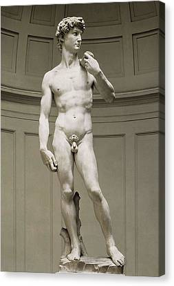 Michelangelo 1475-1564. David Canvas Print by Everett
