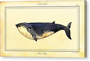 Minke Whale Canvas Print by Juan  Bosco
