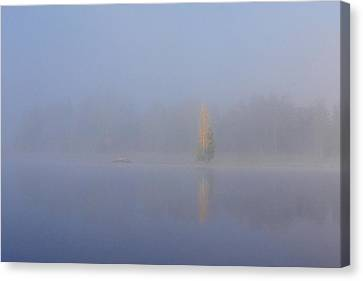 Misty Morning On A Lake Canvas Print by Jouko Lehto