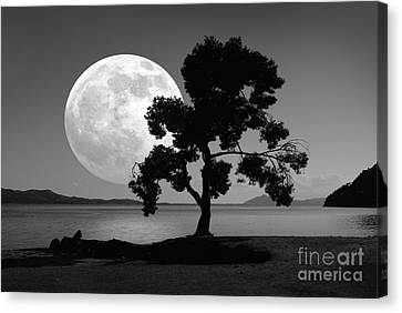 Sea Moon Full Moon Canvas Print - Moon Rising Over The Sea by Detlev van Ravenswaay