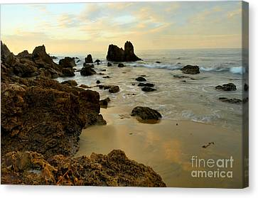 Morning Beach Canvas Print by Timothy OLeary