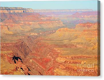 Morning Colors Of The Grand Canyon Inner Gorge Canvas Print by Shawn O'Brien
