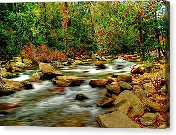 Canvas Print featuring the photograph Mountain Stream by Ed Roberts