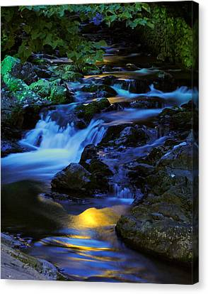 Babbling Canvas Print - Mountain Stream by Frozen in Time Fine Art Photography