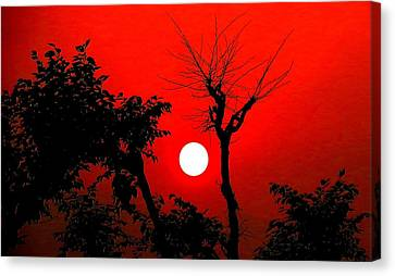 Nature Canvas Print by Viren Rana