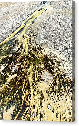 Nature's Inkblot Test - Abstract Runoff Of A Hot Spring With Algae And Bacteria. Canvas Print