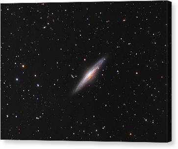 Ngc 2683 Spiral Galaxy Canvas Print by Celestial Images