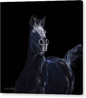 Forelock Canvas Print - Noir by Karen Slagle