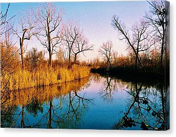 Canvas Print featuring the photograph November by Daniel Thompson