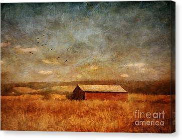 October Afternoon Canvas Print by Lois Bryan