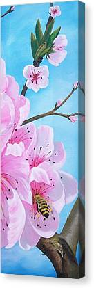#2 Of Diptych Peach Tree In Bloom Canvas Print by Sharon Duguay