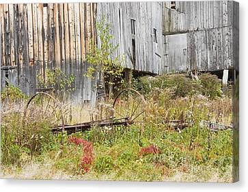 Maine Barns Canvas Print - Old Barn In Fall Maine by Keith Webber Jr