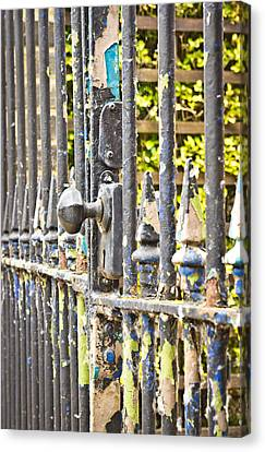 Old Gate Canvas Print by Tom Gowanlock