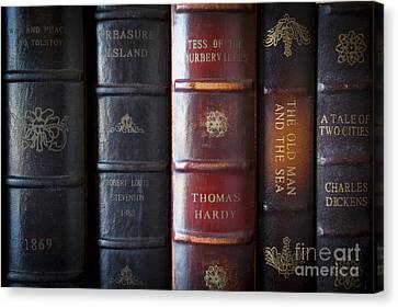 Old Novels Canvas Print by Brian Jannsen