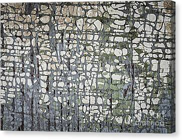 Old Painted Wood Abstract No.6 Canvas Print