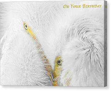 On Your Birthday Canvas Print by Dawn Currie