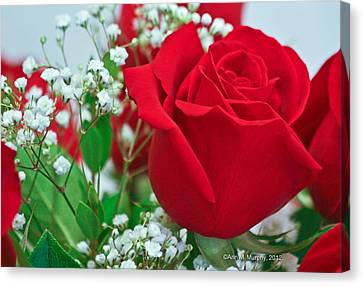 Canvas Print featuring the photograph One Red Rose by Ann Murphy