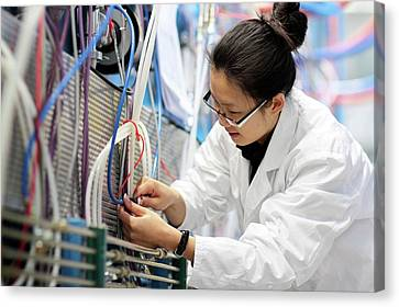 Optical Products Plant Canvas Print