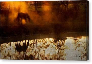 Canvas Print featuring the photograph Orange Mist by Joan Davis