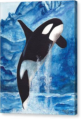 Orca Canvas Print by Molly Williams