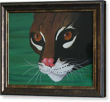 Oscelot Canvas Print by Aileen Carruthers