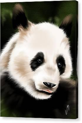 Panda Canvas Print by Veronica Minozzi