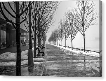 Path Through Fog Canvas Print by Nicky Jameson