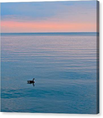 Peace And Tranquility Canvas Print by Frozen in Time Fine Art Photography