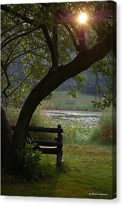 Canvas Print featuring the photograph Peaceful Moment by Tannis  Baldwin