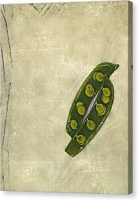 Culinary Canvas Print - Peas In A Pod by Bob RL Evans
