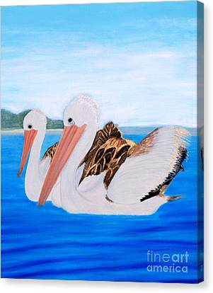 Pelicans.   Inspirations Collection. Canvas Print