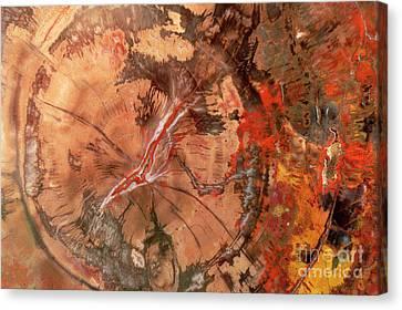 Petrified Forest Arizona Canvas Print - Petrified Wood Detail by Yva Momatiuk John Eastcott