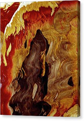 Petrified Wood Canvas Print by Dirk Wiersma