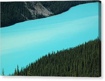 Peyto Lake. Banff National Park In Alberta. Canvas Print by Rob Huntley