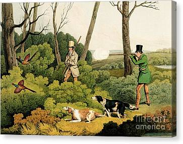 Pheasant Shooting Canvas Print